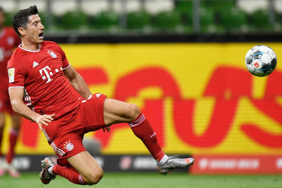 Robert Lewandowski brachte den FC Bayern auf Kurs.