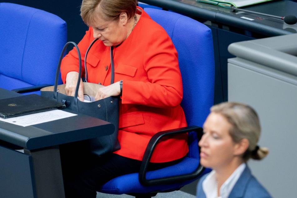 """AfD-Weidel hält Brandrede im Bundestag: """"Merkel verpfändet unser Geld"""""""
