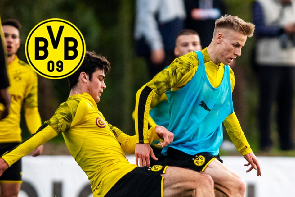 BVB verleiht talentiertes Eigengewächs an Bundesliga-Absteiger!