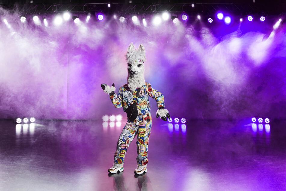 """Ein singendes Alpaka? Bei """"The Masked Singer"""" ist alles möglich."""