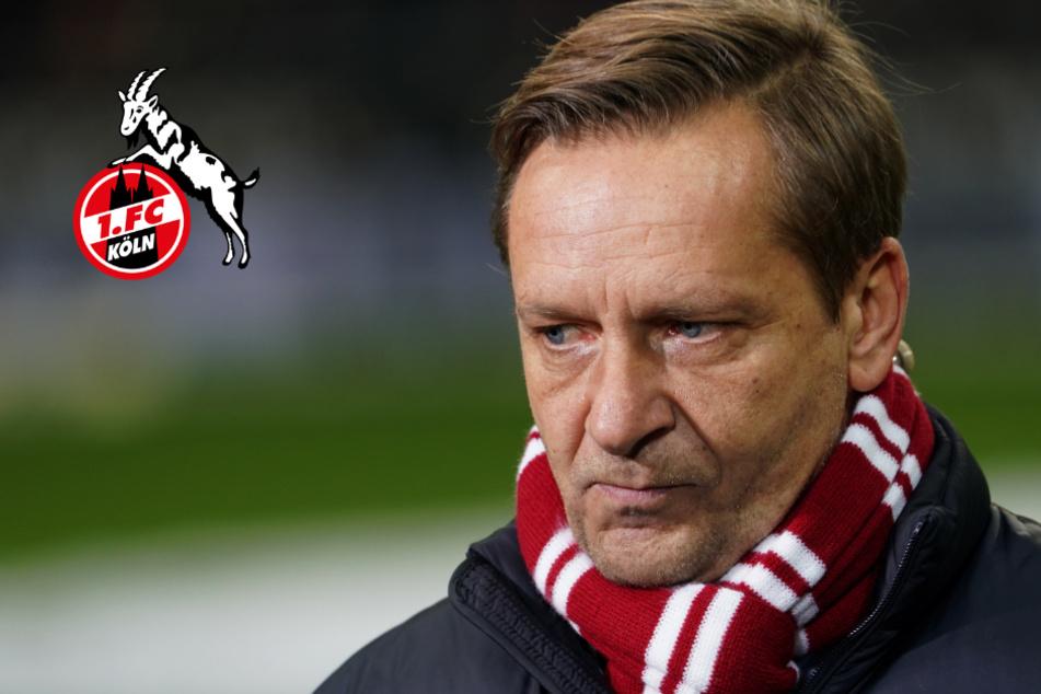 1. FC Köln: Horst Heldt will Profis nicht zu Länderspielen schicken