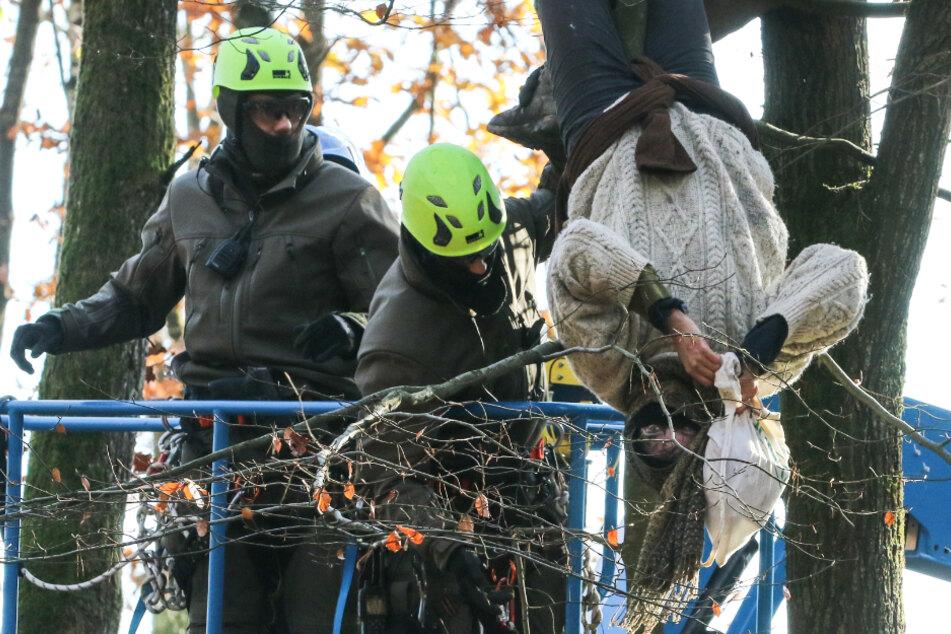 Eine Umweltaktivistin hängt am 18. November kopfüber von einem Baum, während Höhenretter der Polizei versuchen, sie in den Korb eines Hubsteigers zu ziehen.