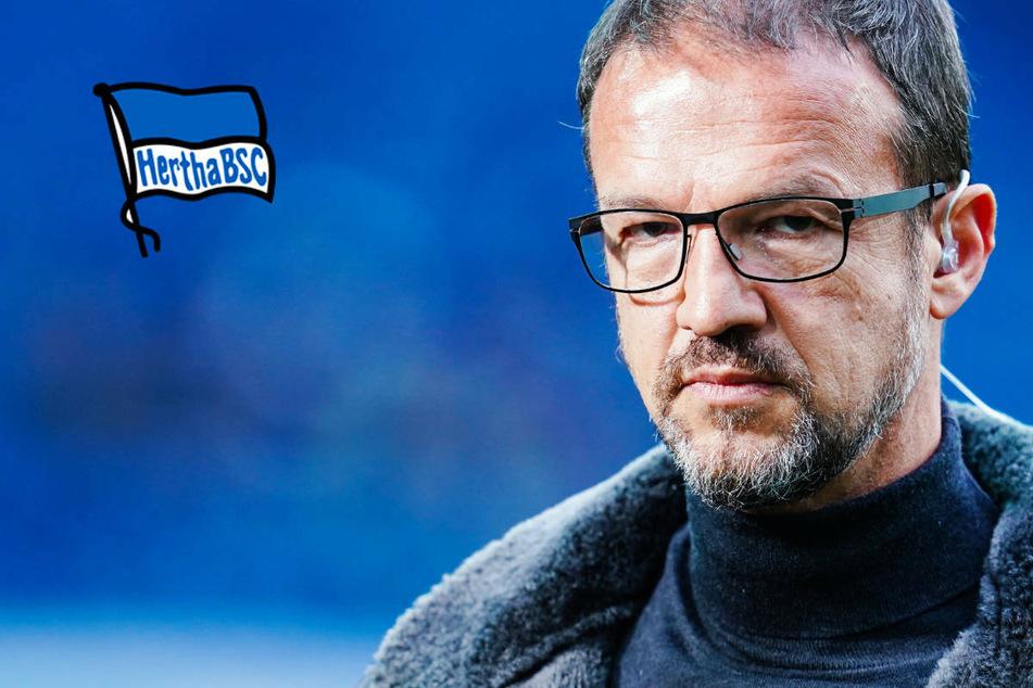Hertha BSC: Führt Fredi Bobic den Hauptstadtklub in eine glorreiche Zukunft?