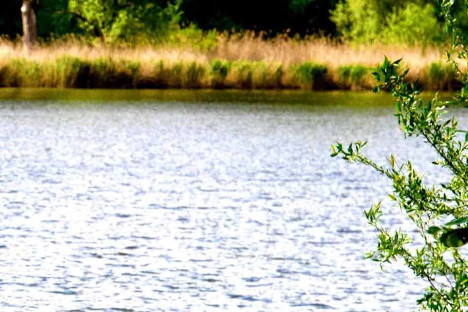 Nach einem Badeunfall im Malchower See in Berlin ist ein zwölfjähriges Mädchen gestorben.