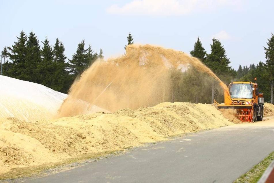 Mit einer Schneefräse wurden 320 Kubikmeter Sägespäne zur Isolierung auf die Schnee-Reserve der Skiarena geblasen.