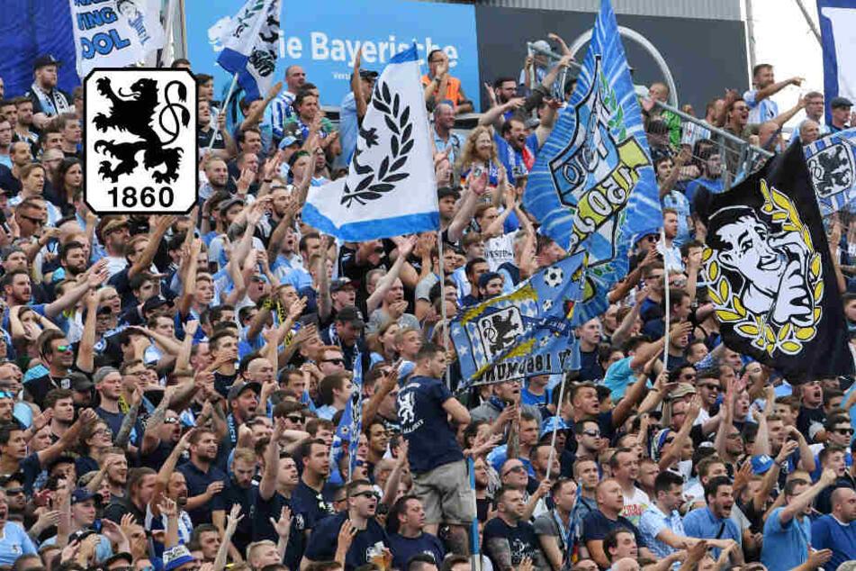 TSV 1860 München mit Angst vor Eskalation: Schreiben soll Löwen-Fans wachrütteln