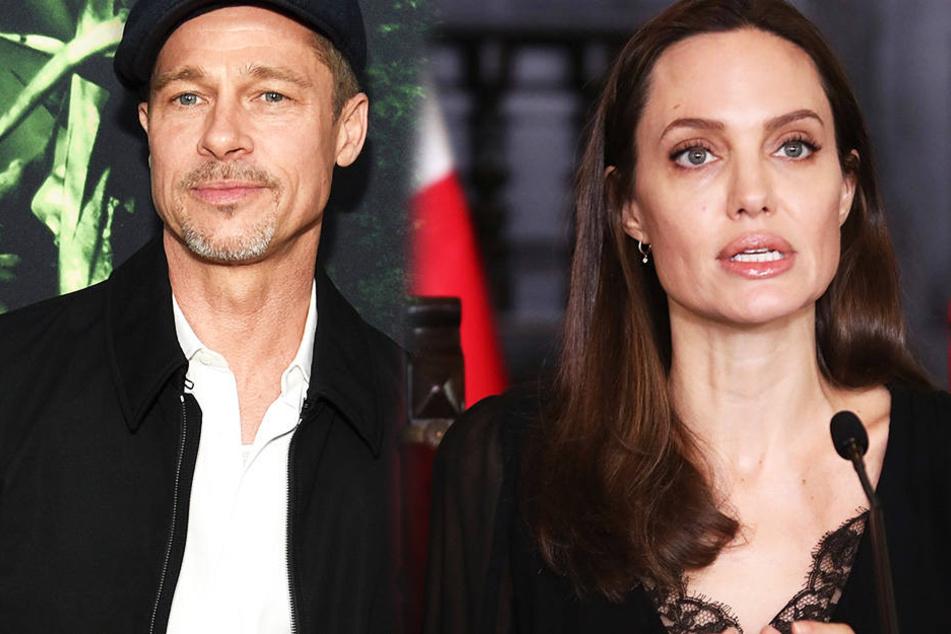 Endet bald der Rosenkrieg zwischen den beiden Streithähnen Jolie und Pitt? (Fotomontage)