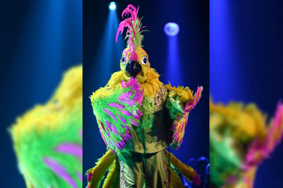 Kakadu Masked Singer