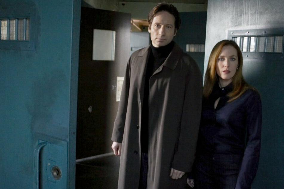 """Sechs Jahre nach dem Ende der Serie kehrten Mulder (David Duchovny) und Scully (Gillian Anderson) mit """"Akte X - Jenseits der Wahrheit"""" auf die Leinwand zurück."""