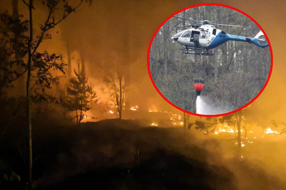 Vorsicht vor Feuer: Am Wochenende droht höchste Waldbrandstufe