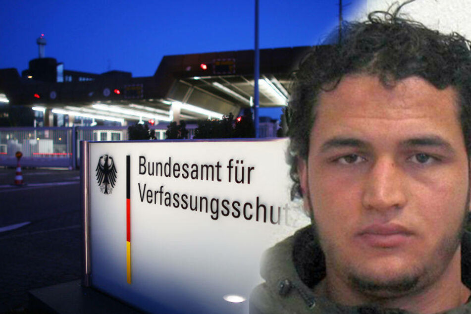 Was wusste der Verfassungsschutz über Anis Amri? Mitarbeiter widerspricht Darstellung