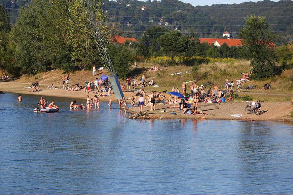 Trotz mehrerer Badetoter war die Kiesgrube auch an diesem Sonntag wieder bestens  besucht.