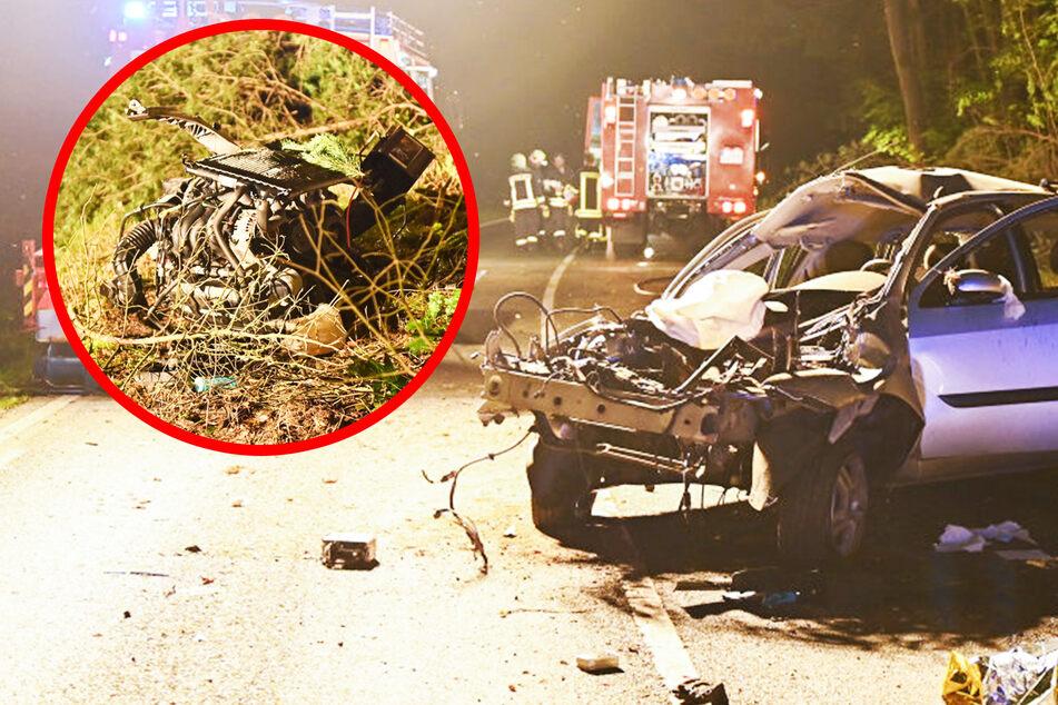Baum gefällt, Motor herausgerissen: Schwerer Unfall in der Lausitz