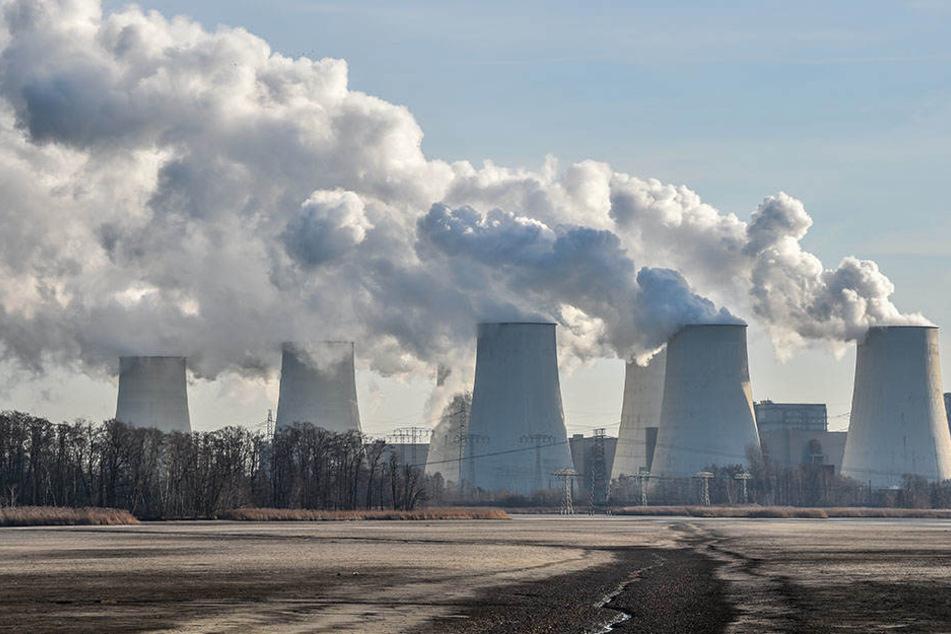 Bis 2020 soll der Kohlendioxid-Ausstoß um 40 Prozent zum Vergleich von 1990 verringert werden.