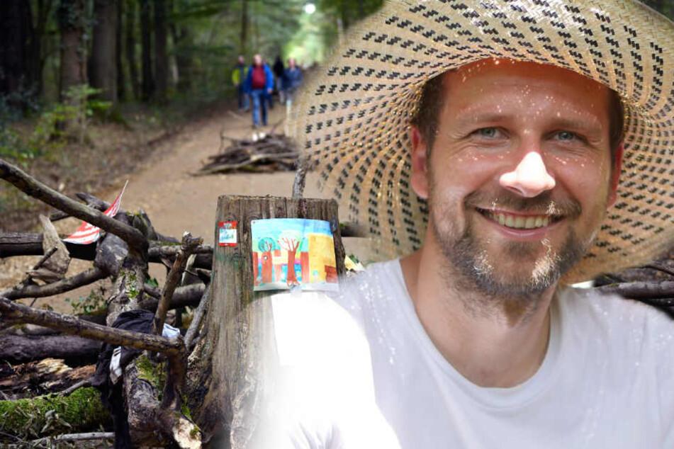Suchmaschine will Hambacher Forst kaufen, doch RWE hat andere Pläne