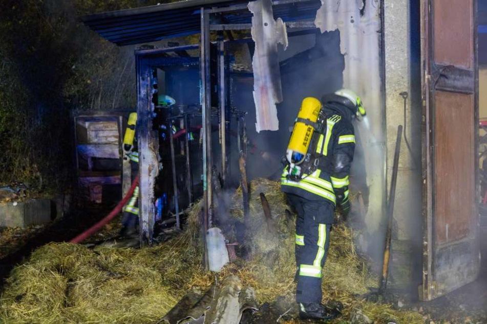 Brandstiftung? Schuppen und Container stehen in Flammen