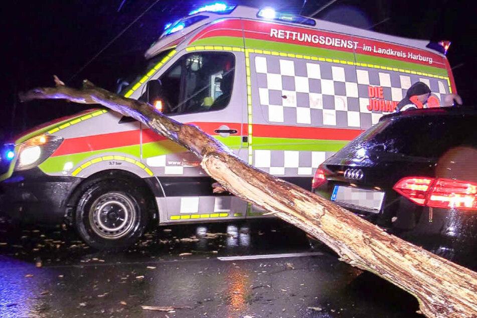 Ein Rettungswagen konnte einem Baum nicht mehr ausweichen.