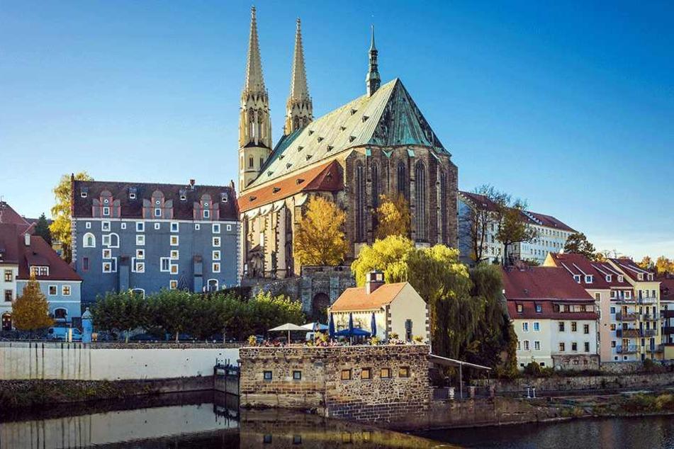 Görlitz ist eine der schönsten Städte Deutschlands. Ein wenig Unkraut würde daran nichts ändern.