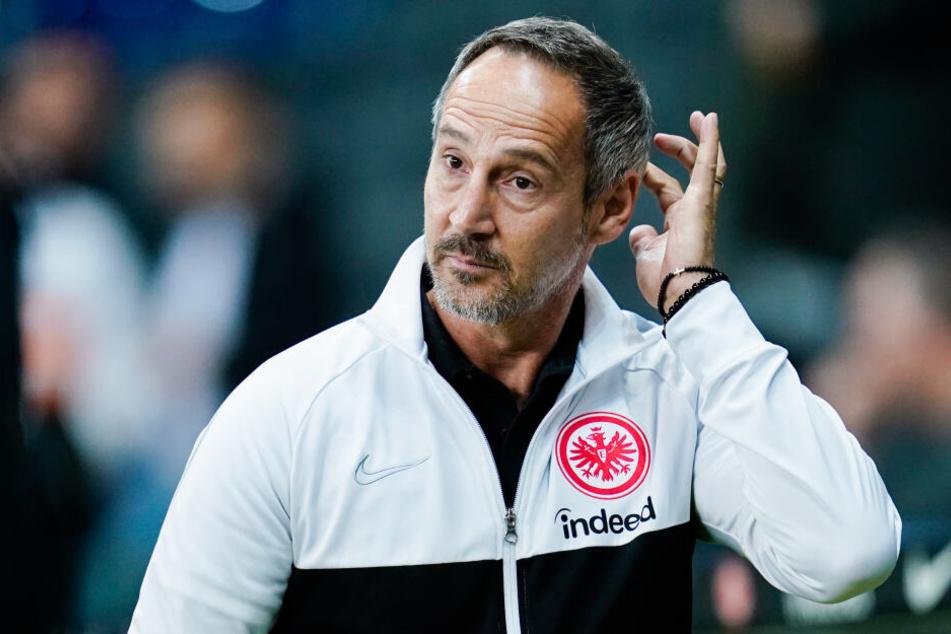 Eintracht-Coach Adi Hütter war mit allgemeinen Schiedsrichter-Leistung beim Spiel gegen die Hertha nicht zufrieden.