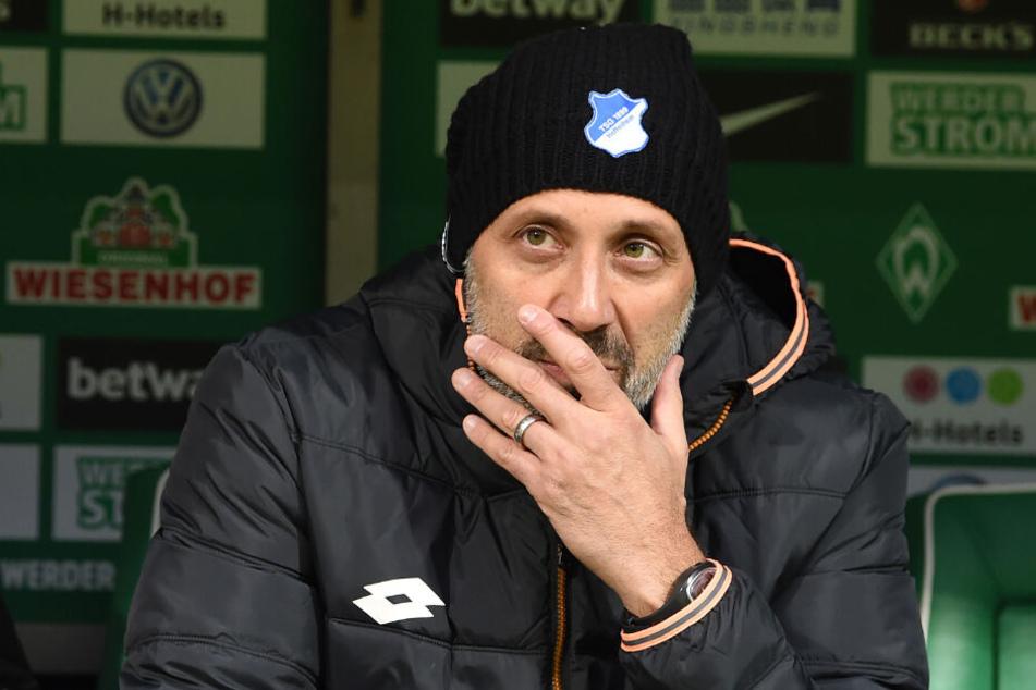Bisher saß er als Co-Trainer der TSG Hoffenheim auf der Bank: Pellegrino Matarazzo.