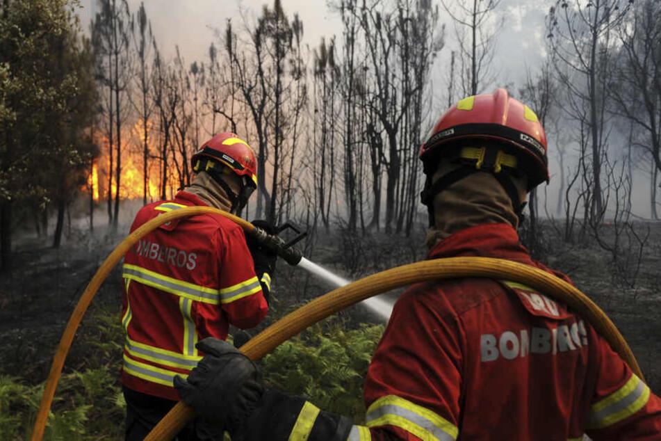 Die Feuerwehr in Portugal braucht immer noch Unterstützung. (Symbolbild)