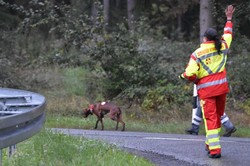 Mann sucht Pilze: Kurz darauf fahnden Rettungskräfte nach dem Sammler