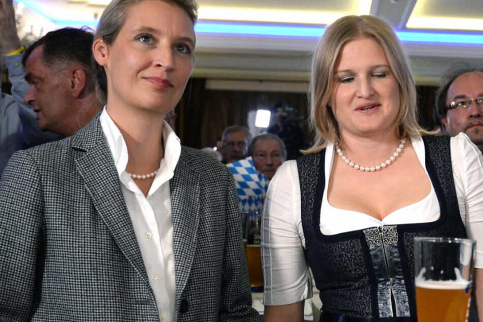 AfD-Fraktion mit Doppelspitze: Ebner-Steiner und Plenk gewählt