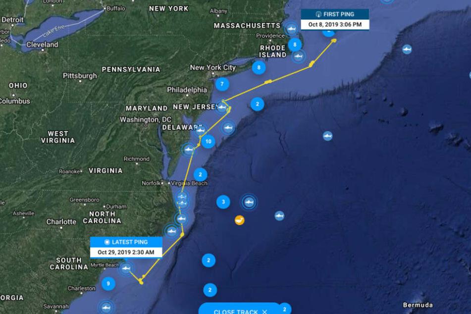 """Wo befindet sich der Weiße Hai """"Ironbound"""" und welche Route hat er genommen? Mit """"Global Shark Tracker"""" lässt sich beides verfolgen. (Screenshot)"""