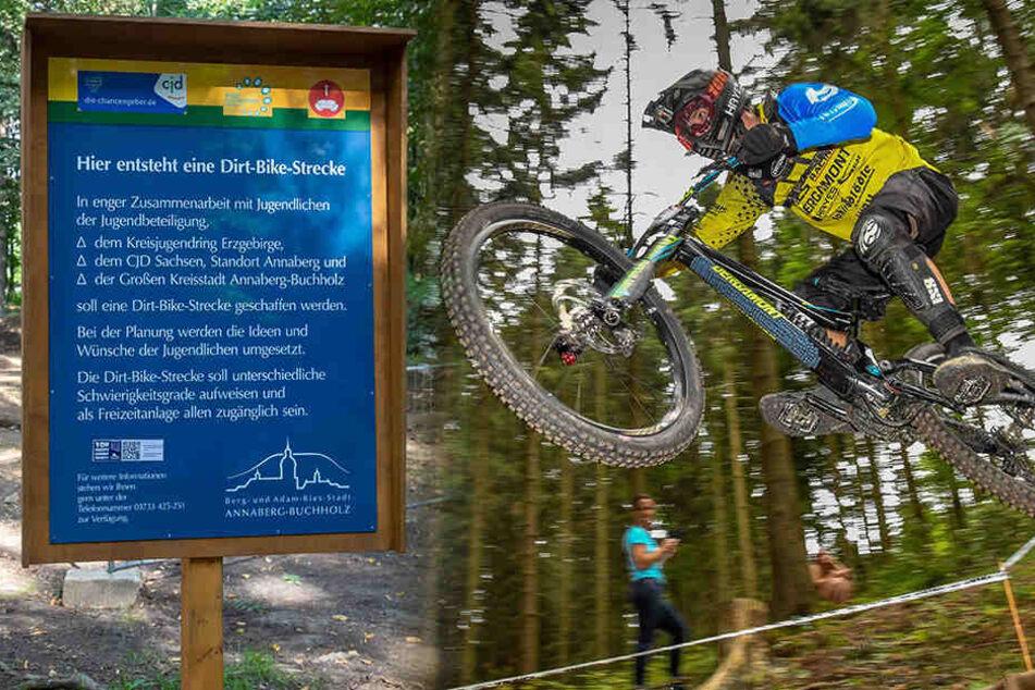 Neue Attraktion am Pöhlberg: Alter Waldspielplatz wird zum Radel-Park