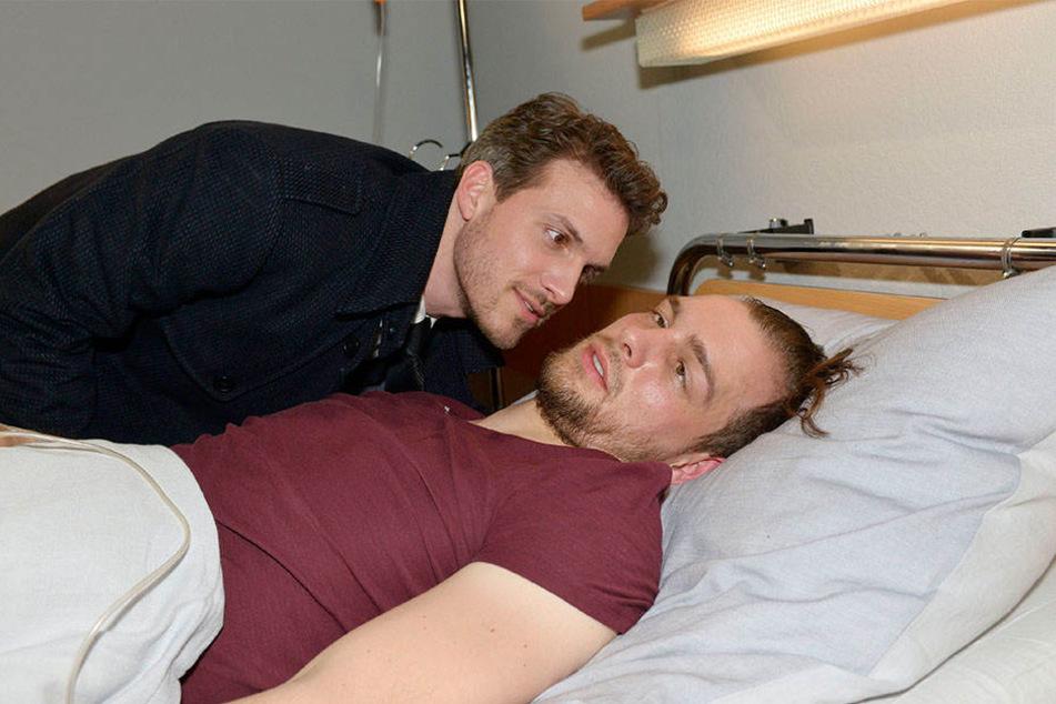Die Story von Chris und Felix zieht sich nun schon seit mehreren Monaten.