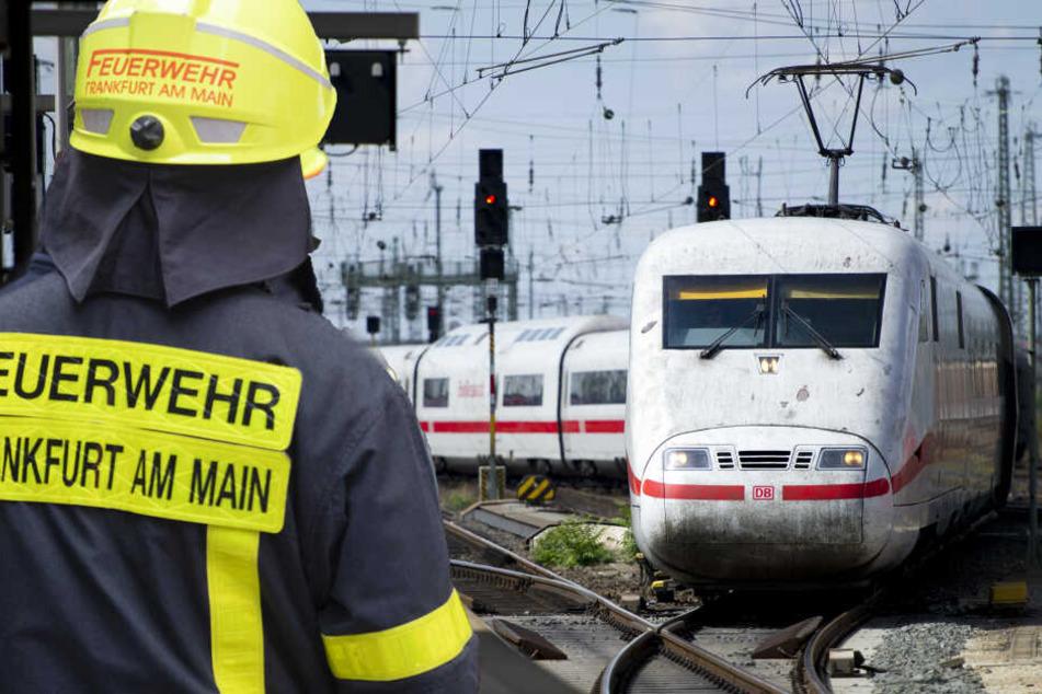Fotomontage: Für rund 30 Minuten war die Frankfurter Feuerwehr am Donnerstag am Hauptbahnhof im Einsatz (Symbolbild).