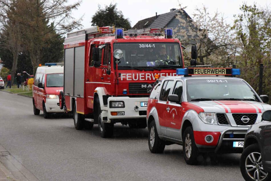 Die Mitarbeiter der Stadt werden dabei von der Wittenberger Feuerwehr unterstützt.