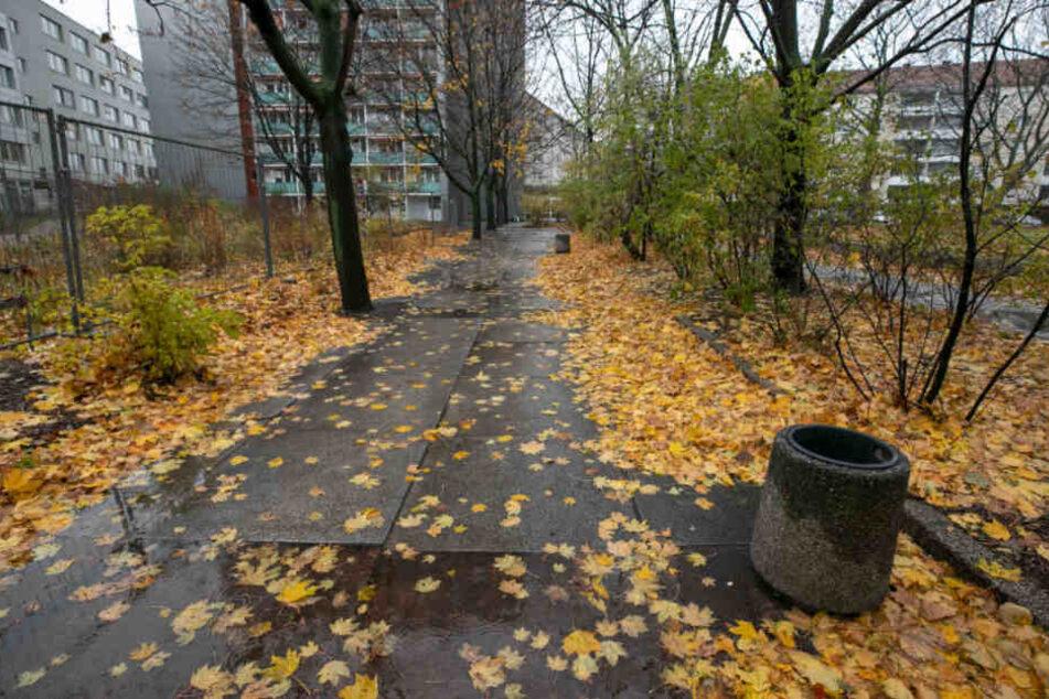 Weil Obdachlose auf den Bänken nahe des Wiener Platzes geschlafen haben, ließ die Stadt sie abbauen.