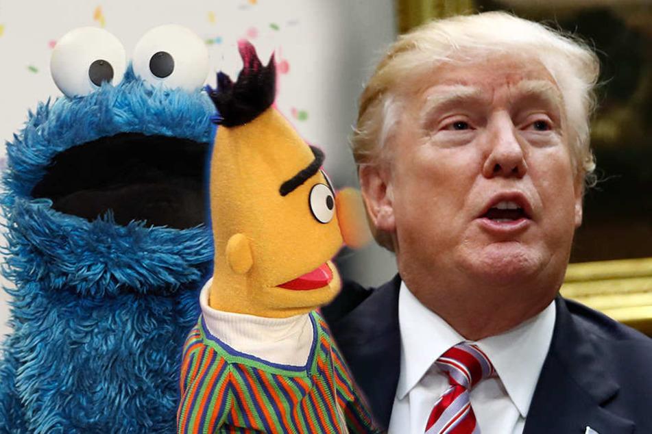 Krümelmonster und Bert vs. Donald Trump.