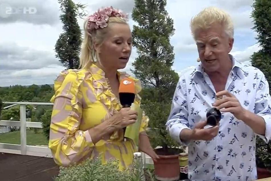 Kiwi lässt sich von TV-Koch Armin Roßmeier Tipps für leichte italienische Küche zeigen.