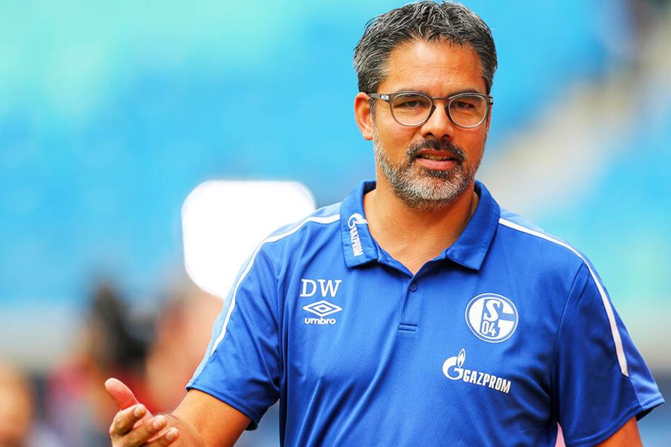 Der neue Trainer David Wagner hat es innerhalb kürzester Zeit geschafft, eine funktionierende Mannschaft zu formen, die auf dem Feld ihre Stärken ausspielen kann.