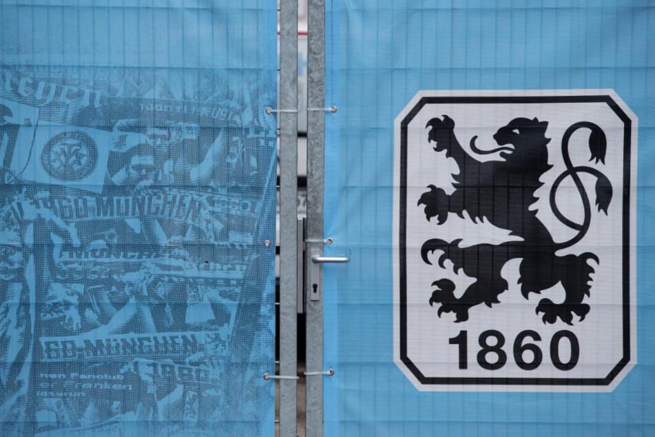 Der TSV 1860 München hat einen Lauf. Der Aufstieg ist zum Greifen nahe.
