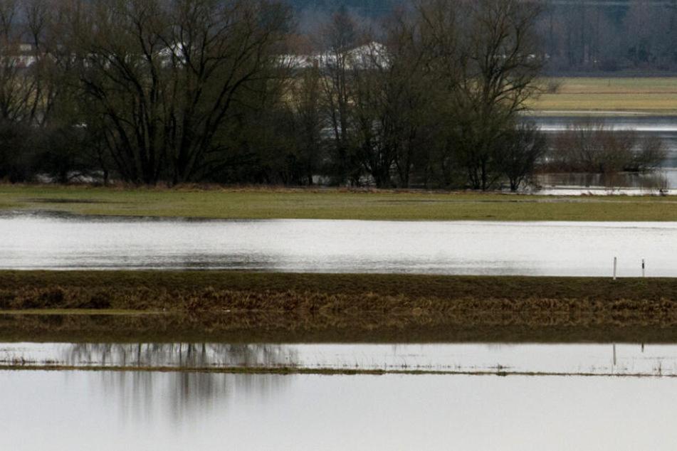Überschwemmte Felder in Donaueschingen im Januar 2018.