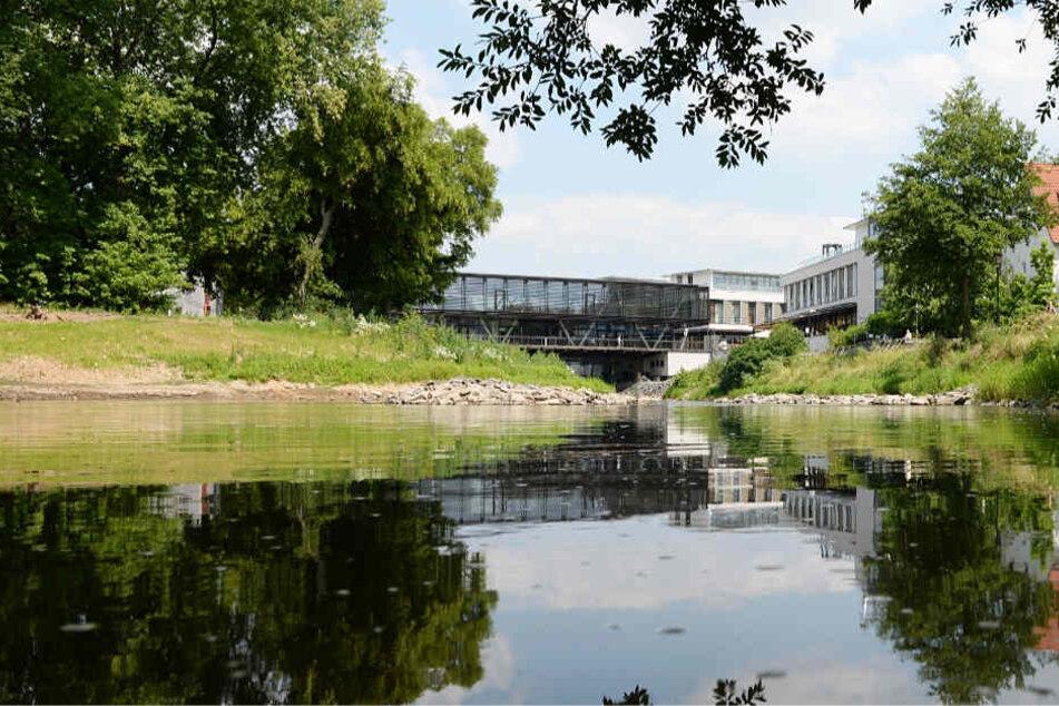 Die Nidda und der Kurpark prägen das Stadtbild von Bad Vilbel (Archivbild).