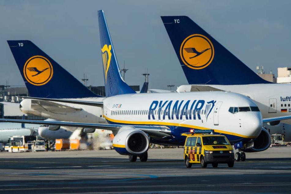 Die Billigfluggesellschaft Ryanair zittert vor dem Brexit!