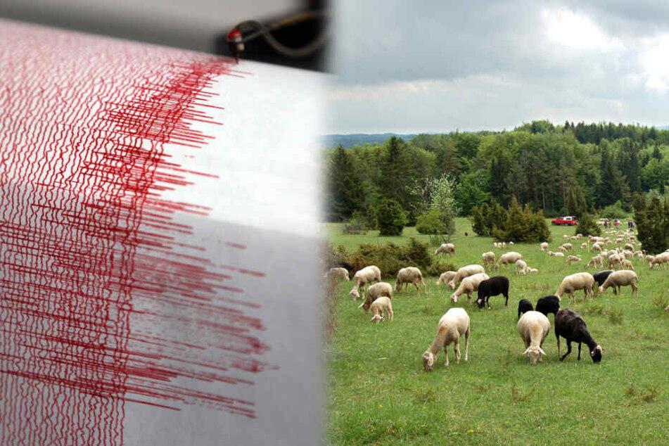 Erdbeben erschüttert die Schwäbische Alb