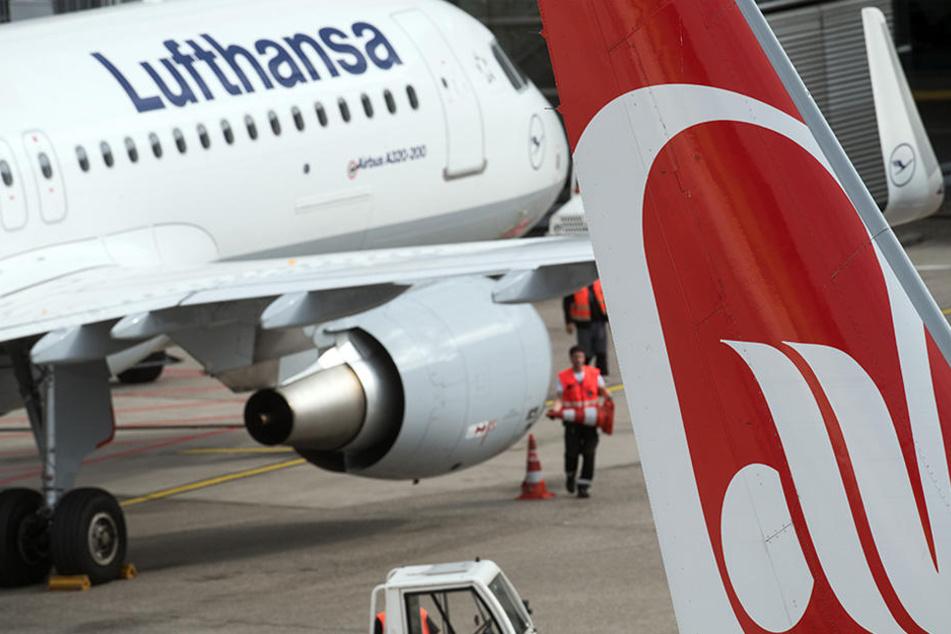 Vor allem die Air-Berlin-Tochter Niki ist aufgrund seiner modernen Flotte besonders begehrt.
