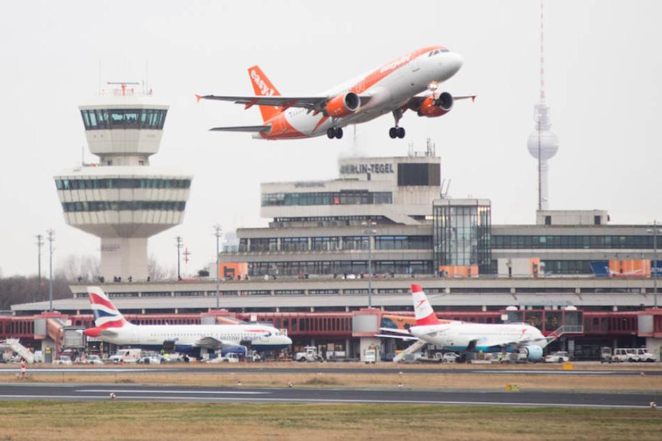 Und den wollen sie schließen? Flughafen Tegel macht fetten Millionen-Gewinn