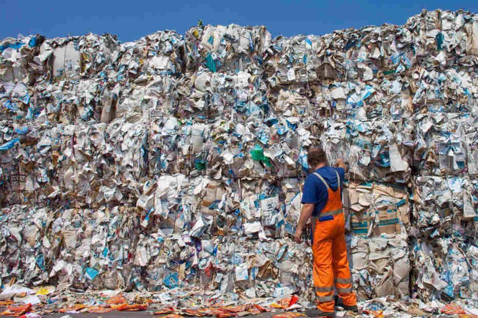 Ein Mitarbeiter eines Unternehmens, das Qualitätsprodukte auf Altpapier-Basisherstellt, steht vor einer Wand aus Ballen mit gepressten Altpapier.