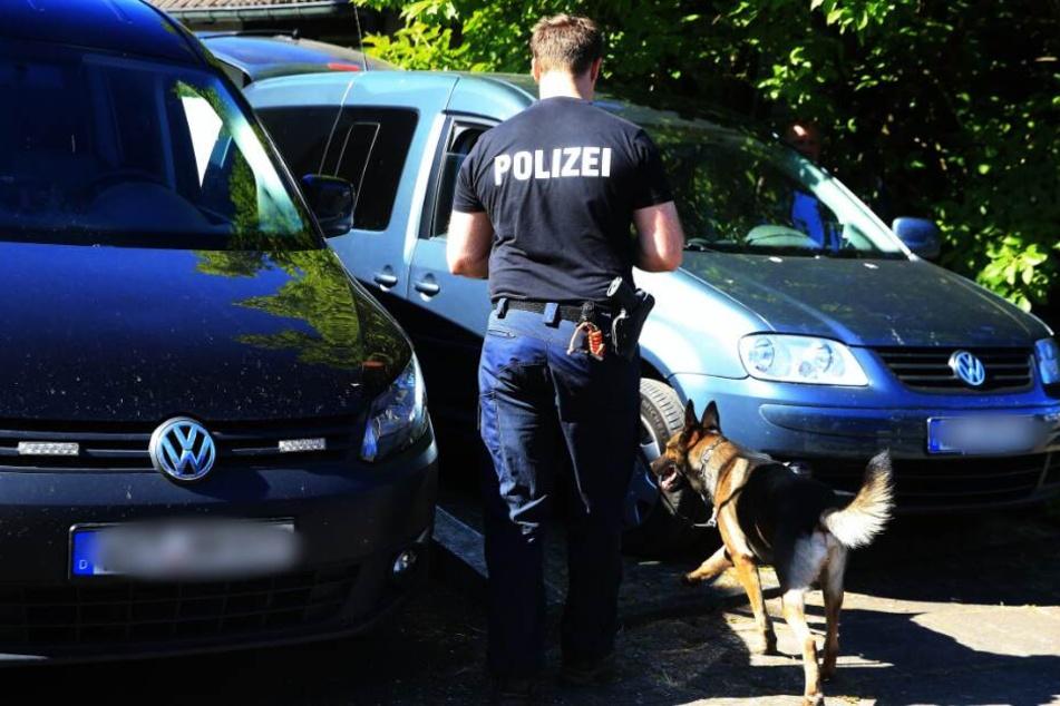 Die Suche mit einem Leichenspürhund wurde vorläufig beendet. (Symbolbild)