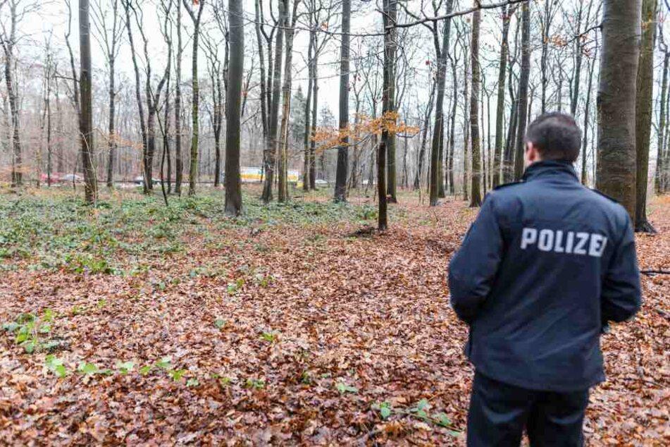 """Am Donnerstag entdeckten ein Hund und sein Besitzer einen Totenschädel im Waldstück """"Eilenriede"""" in Hannover."""