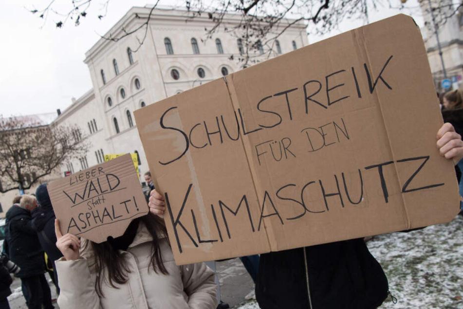 Schüler demonstrieren mit selbstgemalten Plakaten vor der Universität für den Klimaschutz.