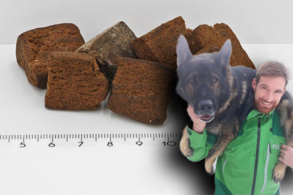 Guter Riecher: Polizeihund erschnüffelt Haschisch in Socke