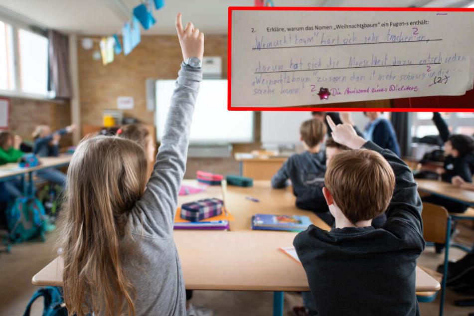 Deutschlehrerin stellt Aufgabe: Grundschüler hat diese herrlich logische Antwort!