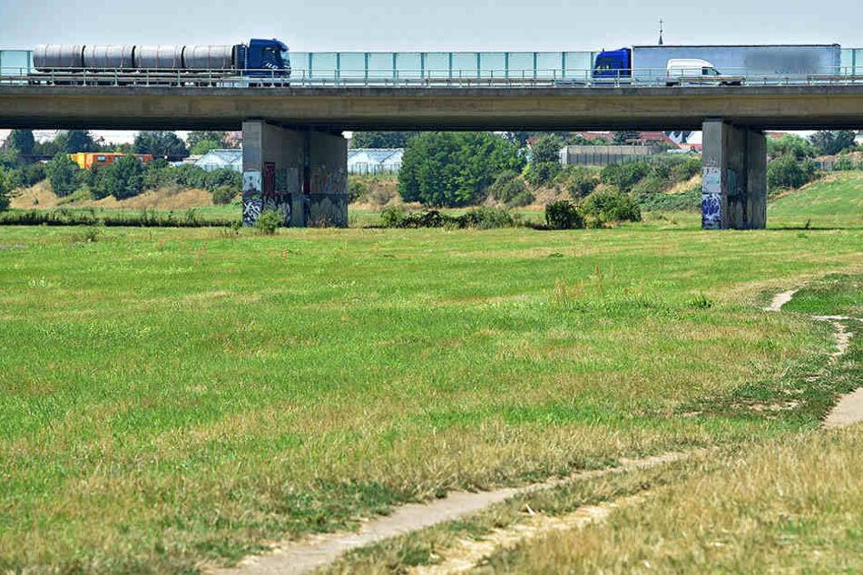 Zwischen Altkaditz und der Autobahnbrücke entsteht ein neuer Teil des Elberadweges.